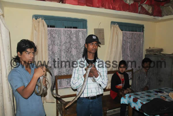 Snake Charmers arrested in Digboi of Assam